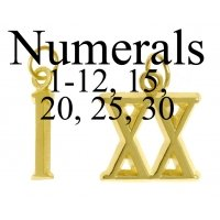 roman numeral 1-30